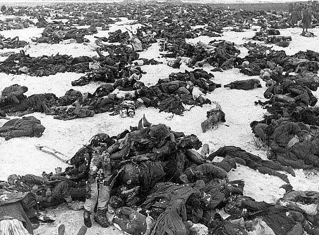 stalingrad corpses
