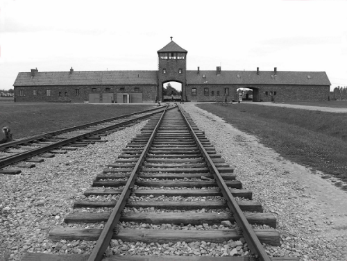 auschwitz train rails