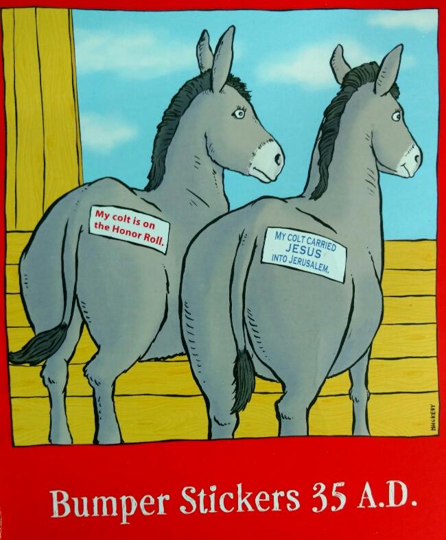 donkey jenny card.jpg