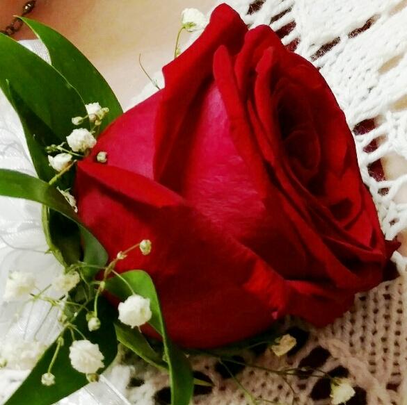 flores confirmation