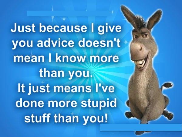 donkey-wisdom