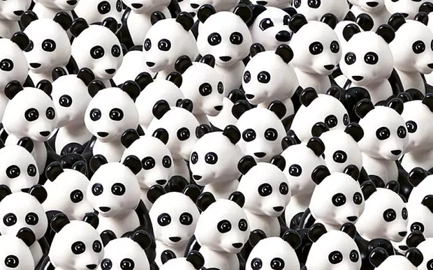 dog among the pandas