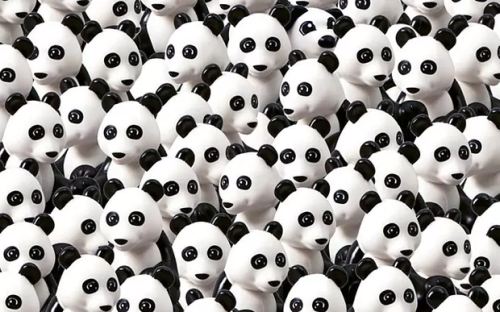 dog among the pandas