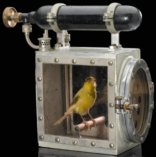 coal mine canary resuscitation machine