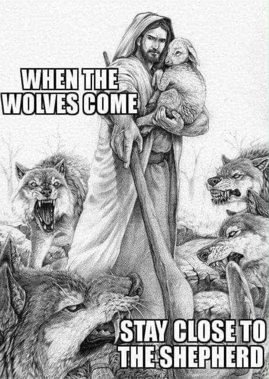 Jesus lamb wolves